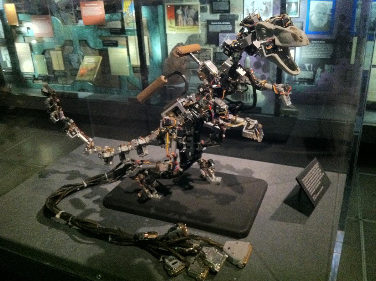 Raptor DID. Photo