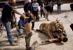 The true story behind 'Gladiator's' prosthetic tiger